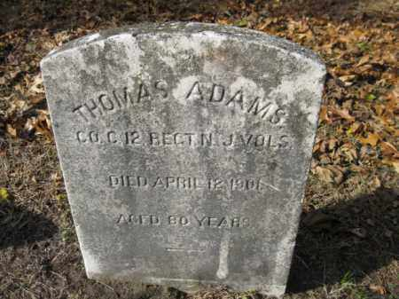 ADAMS, THOMAS - Burlington County, New Jersey   THOMAS ADAMS - New Jersey Gravestone Photos