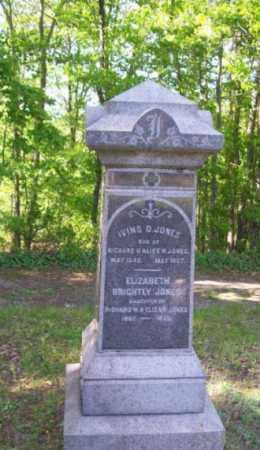 JONES, IVINS D. - Burlington County, New Jersey | IVINS D. JONES - New Jersey Gravestone Photos
