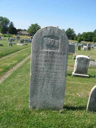 MALSBURY, MOSES W. - Burlington County, New Jersey | MOSES W. MALSBURY - New Jersey Gravestone Photos