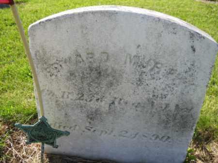 MURPHY, EDWARD - Burlington County, New Jersey | EDWARD MURPHY - New Jersey Gravestone Photos