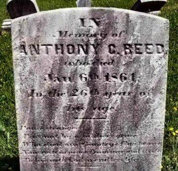 REED, ANTHONY C. - Burlington County, New Jersey | ANTHONY C. REED - New Jersey Gravestone Photos