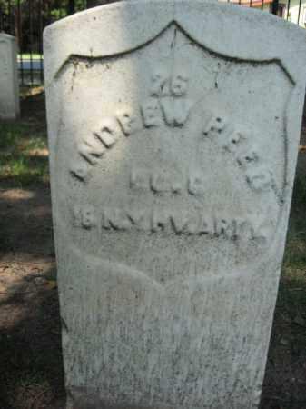 REED, ANDREW - Burlington County, New Jersey | ANDREW REED - New Jersey Gravestone Photos