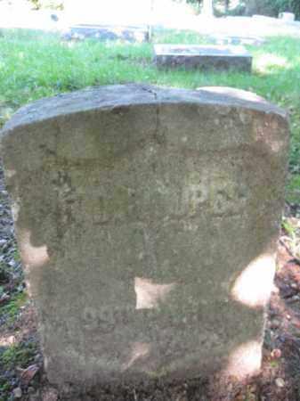 HOOPES, F. DAVIS - Camden County, New Jersey | F. DAVIS HOOPES - New Jersey Gravestone Photos