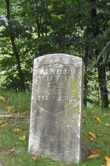BALDWIN, LEWIS B. - Essex County, New Jersey   LEWIS B. BALDWIN - New Jersey Gravestone Photos
