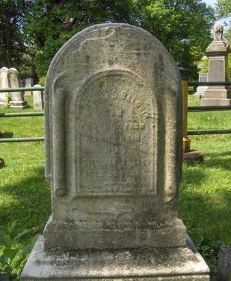 BALDWIN, WILLIAM S. - Essex County, New Jersey | WILLIAM S. BALDWIN - New Jersey Gravestone Photos