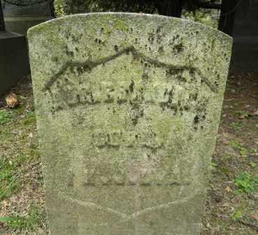 BANCHERT (BRAUSCHERT), AUGUST - Essex County, New Jersey | AUGUST BANCHERT (BRAUSCHERT) - New Jersey Gravestone Photos