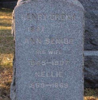 CRONK, HENRY - Essex County, New Jersey   HENRY CRONK - New Jersey Gravestone Photos