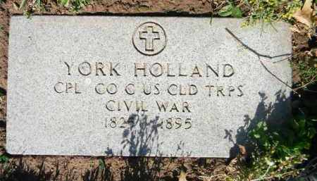 HOLLAND, YORK - Essex County, New Jersey   YORK HOLLAND - New Jersey Gravestone Photos