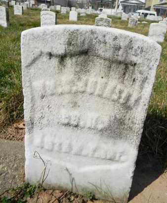 JOHNSON, WILLIAM C. - Essex County, New Jersey | WILLIAM C. JOHNSON - New Jersey Gravestone Photos