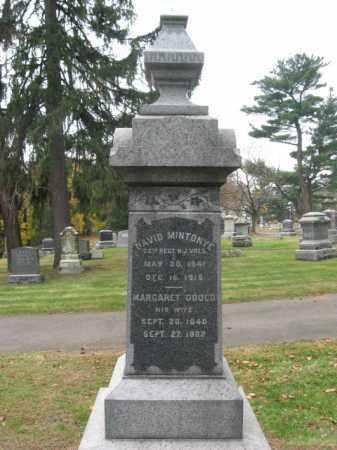 MINTONYE (MINTONGE), DAVID - Essex County, New Jersey | DAVID MINTONYE (MINTONGE) - New Jersey Gravestone Photos