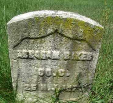 RIKER, ABRAHAM - Essex County, New Jersey | ABRAHAM RIKER - New Jersey Gravestone Photos