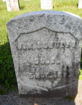 SCHULER, JOHN MARTIN - Essex County, New Jersey | JOHN MARTIN SCHULER - New Jersey Gravestone Photos