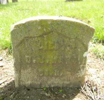 WARD, DAVID BROWN - Essex County, New Jersey   DAVID BROWN WARD - New Jersey Gravestone Photos