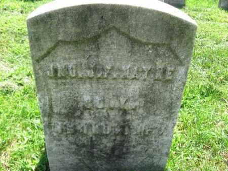 MAYNE, JOHN J.F. - Hudson County, New Jersey   JOHN J.F. MAYNE - New Jersey Gravestone Photos