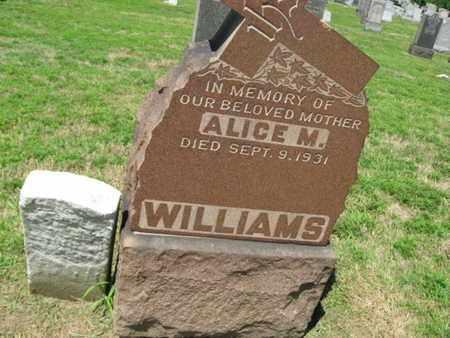 WILLIAMS, THOMAS T. - Hudson County, New Jersey   THOMAS T. WILLIAMS - New Jersey Gravestone Photos