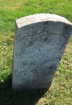 ZIMMER, JACOB (JAKE) - Hudson County, New Jersey | JACOB (JAKE) ZIMMER - New Jersey Gravestone Photos