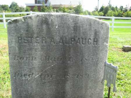 ALPAUGH, PETER A. - Hunterdon County, New Jersey | PETER A. ALPAUGH - New Jersey Gravestone Photos