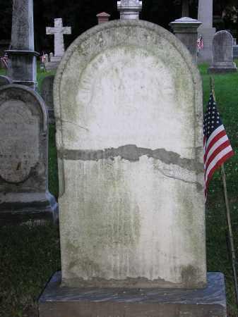 ARNETT, LT.CHARLES W. - Hunterdon County, New Jersey | LT.CHARLES W. ARNETT - New Jersey Gravestone Photos