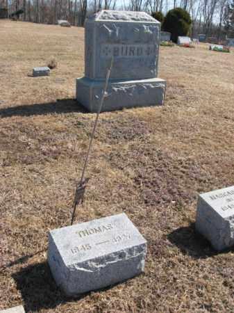 BURD (BIRD), THOMAS - Hunterdon County, New Jersey | THOMAS BURD (BIRD) - New Jersey Gravestone Photos