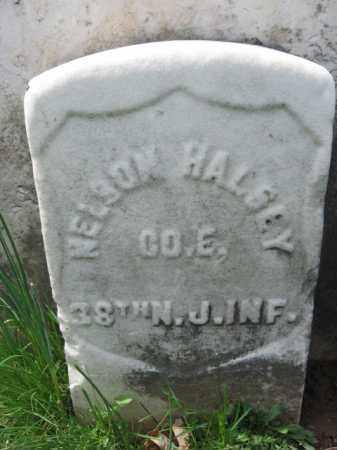 HALSEY, NELSON S. - Hunterdon County, New Jersey | NELSON S. HALSEY - New Jersey Gravestone Photos