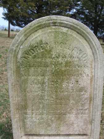 HOLLAND, ANDREW - Hunterdon County, New Jersey | ANDREW HOLLAND - New Jersey Gravestone Photos