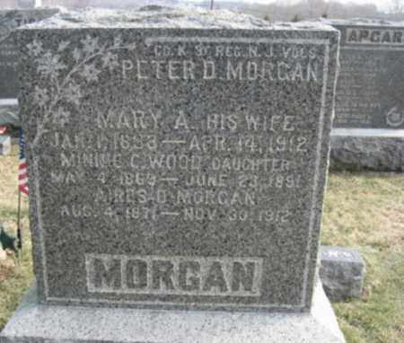 MORGAN, PETER D. - Hunterdon County, New Jersey | PETER D. MORGAN - New Jersey Gravestone Photos