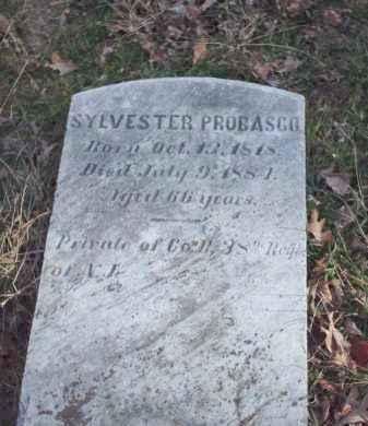 PROBASCO, SYLVESTER - Hunterdon County, New Jersey   SYLVESTER PROBASCO - New Jersey Gravestone Photos
