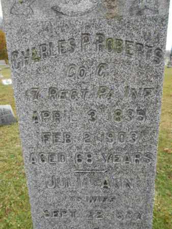 ROBERTS, CHARLES P. - Hunterdon County, New Jersey | CHARLES P. ROBERTS - New Jersey Gravestone Photos
