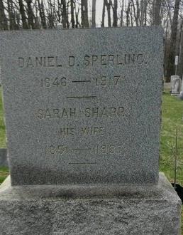 SPERLING, DANIEL D. - Hunterdon County, New Jersey | DANIEL D. SPERLING - New Jersey Gravestone Photos