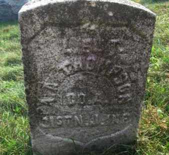 THOMPSON, ANDREW A. - Hunterdon County, New Jersey | ANDREW A. THOMPSON - New Jersey Gravestone Photos