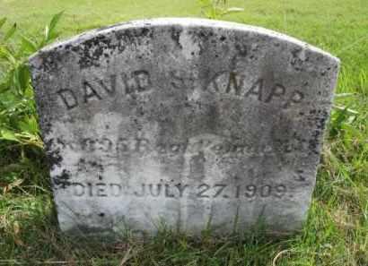 KNAPP, DAVID S. - Mercer County, New Jersey | DAVID S. KNAPP - New Jersey Gravestone Photos