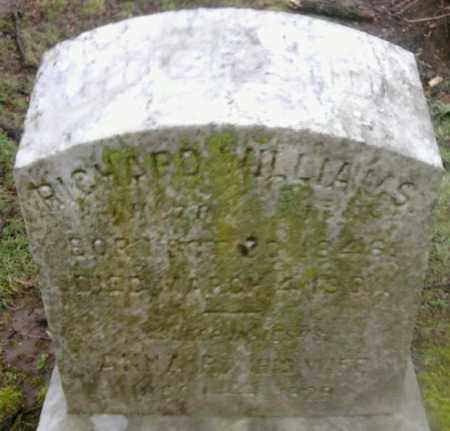 WILLIAMS, RICHARD - Mercer County, New Jersey | RICHARD WILLIAMS - New Jersey Gravestone Photos