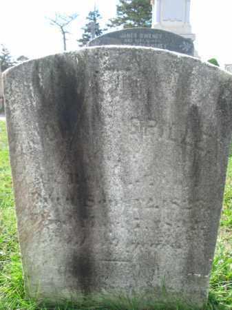 SPILLE, JOHN - Middlesex County, New Jersey | JOHN SPILLE - New Jersey Gravestone Photos