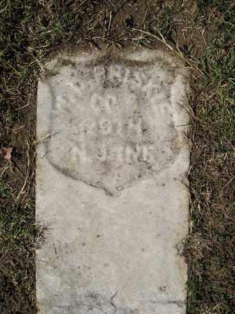 BRISKIE, WILLIAM D. - Monmouth County, New Jersey | WILLIAM D. BRISKIE - New Jersey Gravestone Photos