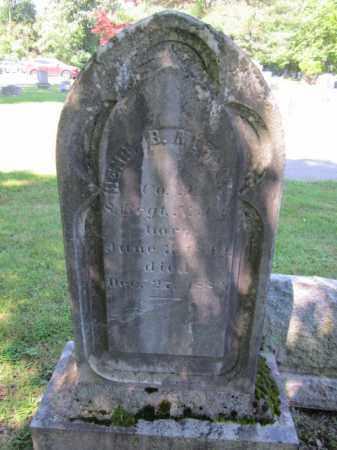 MORGAN, HENRY B. - Passaic County, New Jersey | HENRY B. MORGAN - New Jersey Gravestone Photos
