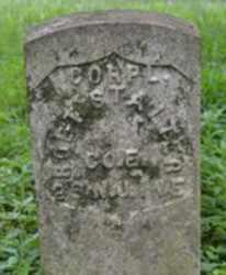 STALTER, ROBERT - Passaic County, New Jersey | ROBERT STALTER - New Jersey Gravestone Photos