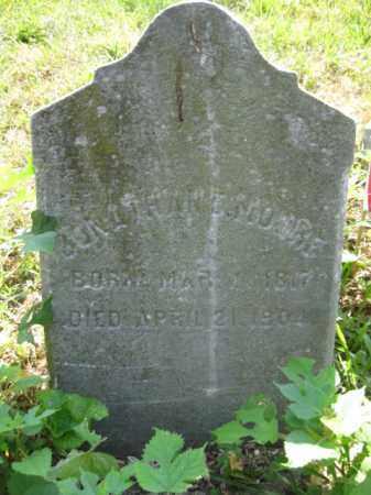 MOORE, JONATHAN E. - Salem County, New Jersey | JONATHAN E. MOORE - New Jersey Gravestone Photos
