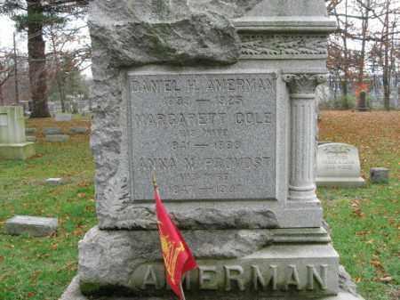 AMERMAN, DANIEL H. - Somerset County, New Jersey | DANIEL H. AMERMAN - New Jersey Gravestone Photos