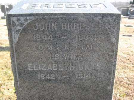 BREESE, JOHN - Somerset County, New Jersey | JOHN BREESE - New Jersey Gravestone Photos