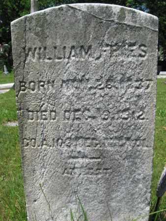 FRIES, WILLIAM (WILHELM) - Somerset County, New Jersey | WILLIAM (WILHELM) FRIES - New Jersey Gravestone Photos