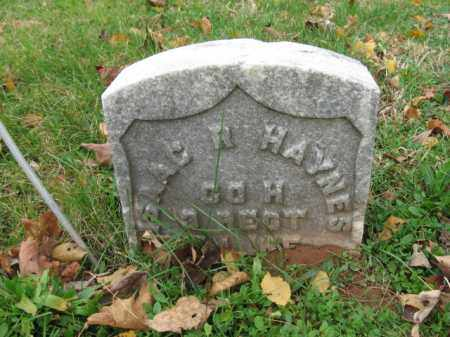 HAYNES, ISAAC R. - Somerset County, New Jersey | ISAAC R. HAYNES - New Jersey Gravestone Photos