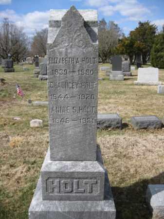 HOLT, CHAUNCEY - Somerset County, New Jersey | CHAUNCEY HOLT - New Jersey Gravestone Photos