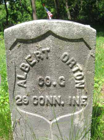 ORTON, ALBERT - Somerset County, New Jersey | ALBERT ORTON - New Jersey Gravestone Photos
