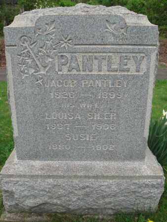 PANTLEY AKA BENTLEY, JACOB - Somerset County, New Jersey   JACOB PANTLEY AKA BENTLEY - New Jersey Gravestone Photos