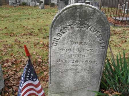 SYLVESTER, GILBERT D. - Somerset County, New Jersey | GILBERT D. SYLVESTER - New Jersey Gravestone Photos