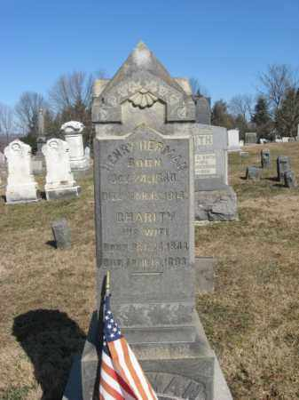 HERMAN, HENRY - Warren County, New Jersey | HENRY HERMAN - New Jersey Gravestone Photos