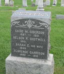 SHOTWELL, NELSON R. - Warren County, New Jersey | NELSON R. SHOTWELL - New Jersey Gravestone Photos