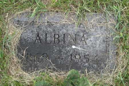 GUSTOFSON, ALBINA - Barnes County, North Dakota | ALBINA GUSTOFSON - North Dakota Gravestone Photos