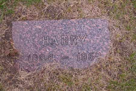 LINDVOLD, HARRY - Barnes County, North Dakota | HARRY LINDVOLD - North Dakota Gravestone Photos