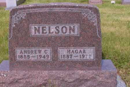 NELSON, ANDREW C. - Barnes County, North Dakota | ANDREW C. NELSON - North Dakota Gravestone Photos